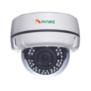 "1/3"" 1.3-Megapixel Color Dome IP Camera Zoom - POE"